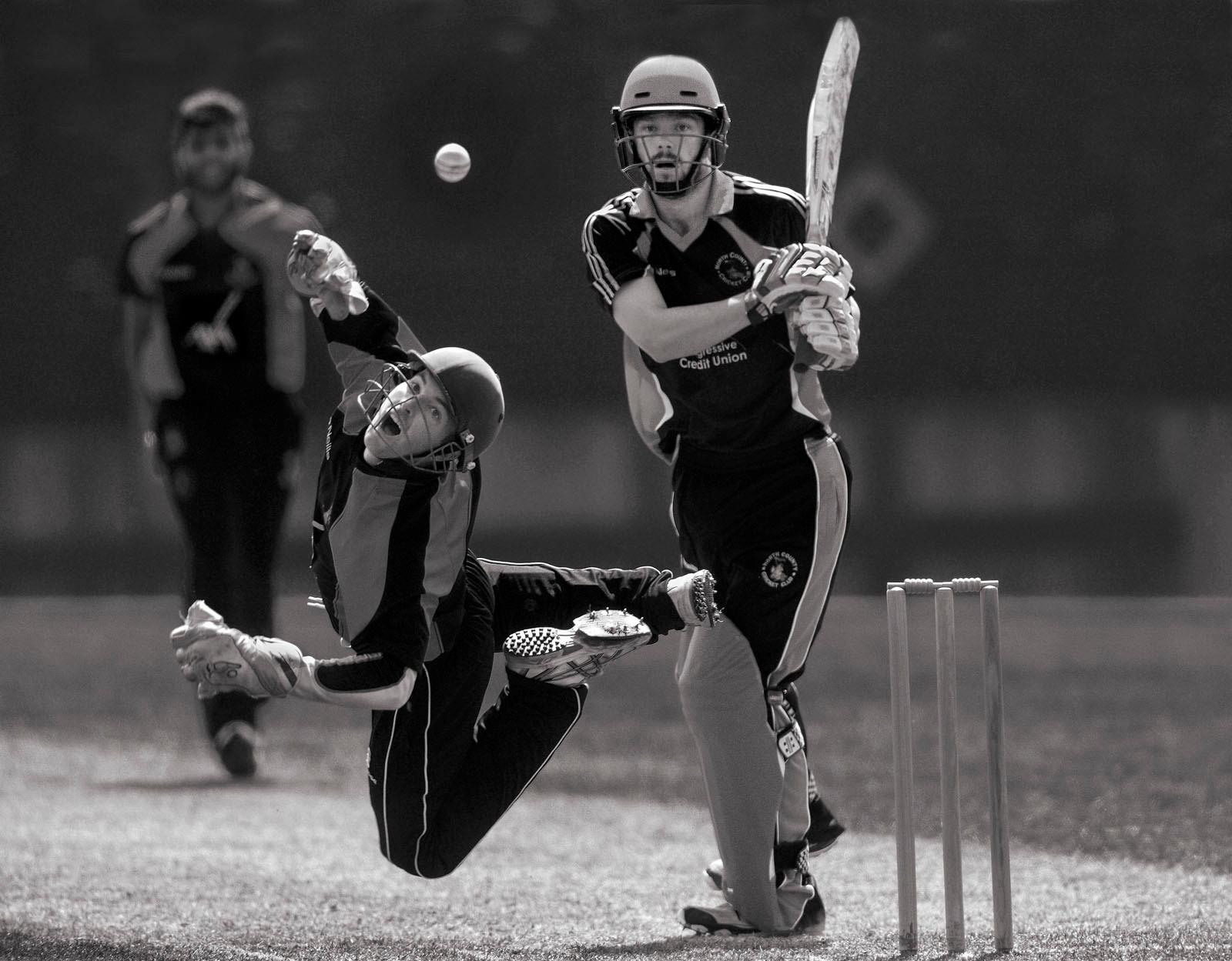 MONO - Cricket Dive by Joe Curtis (15 marks)