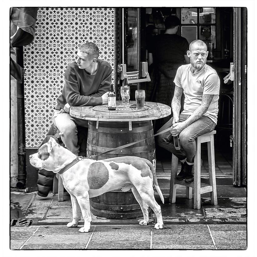MONO - Waiting for Godot by John Tinman (9 marks)