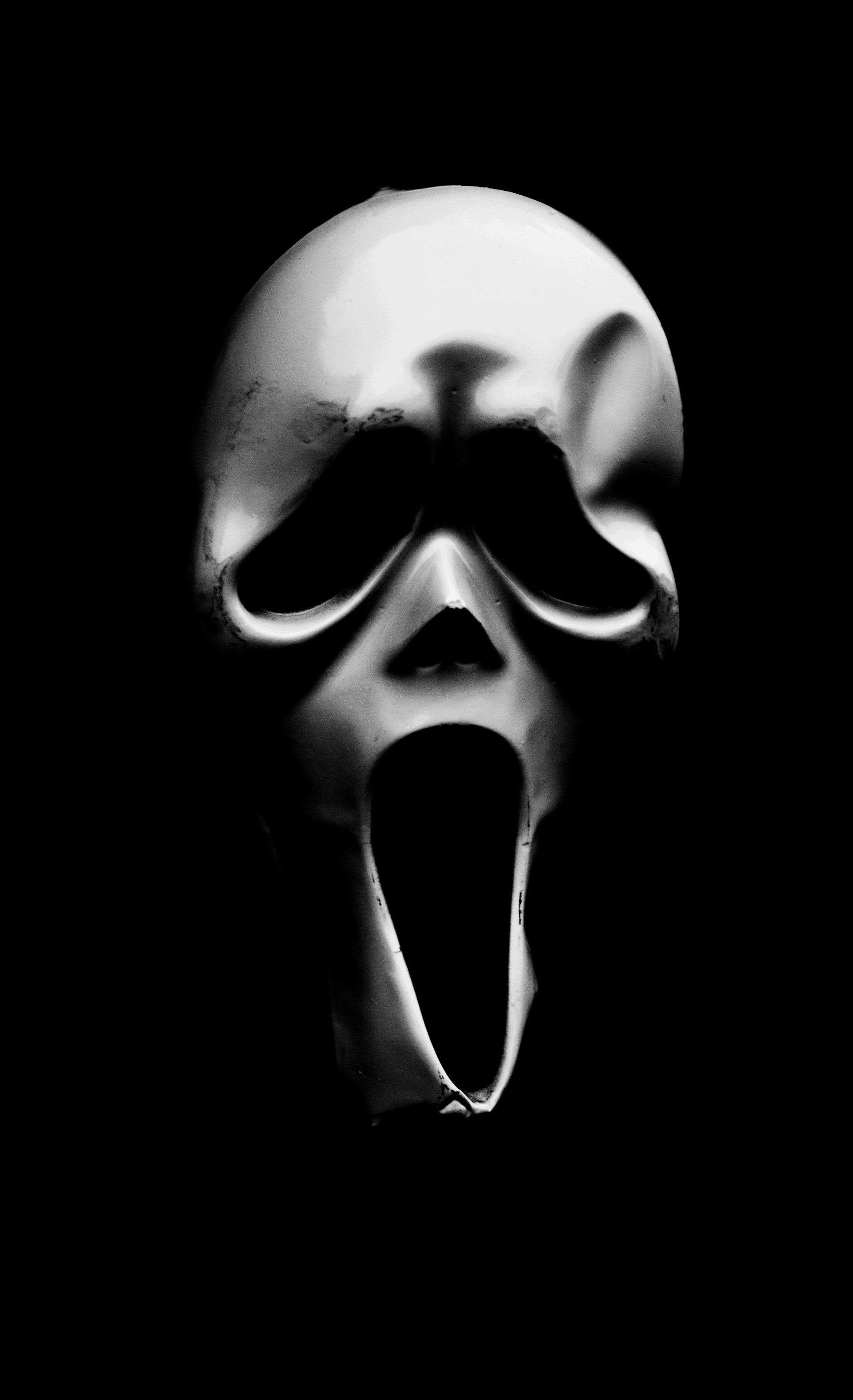 MONO - Scream - Michael and Janet Jackson by Danny Fagan (10 marks)