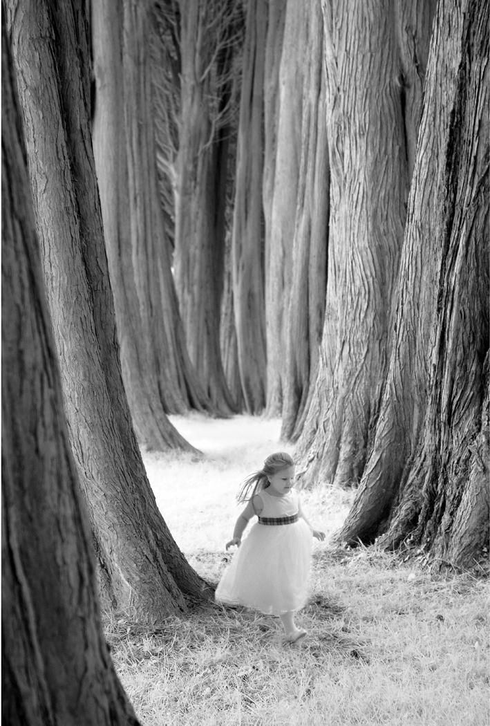 Down to the woods-kieran d murray_banbridge c. c..jpg