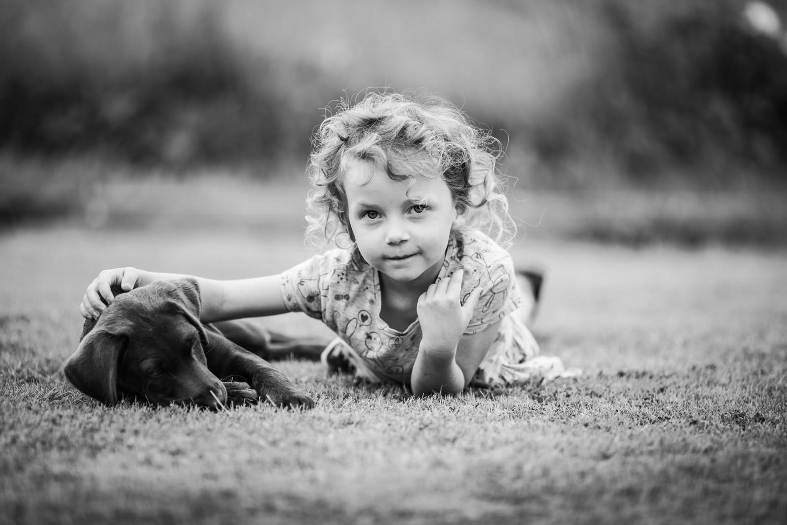 MONO - A Dogs Purpose - W Bruce Cameron by Evita Browne (12 marks)
