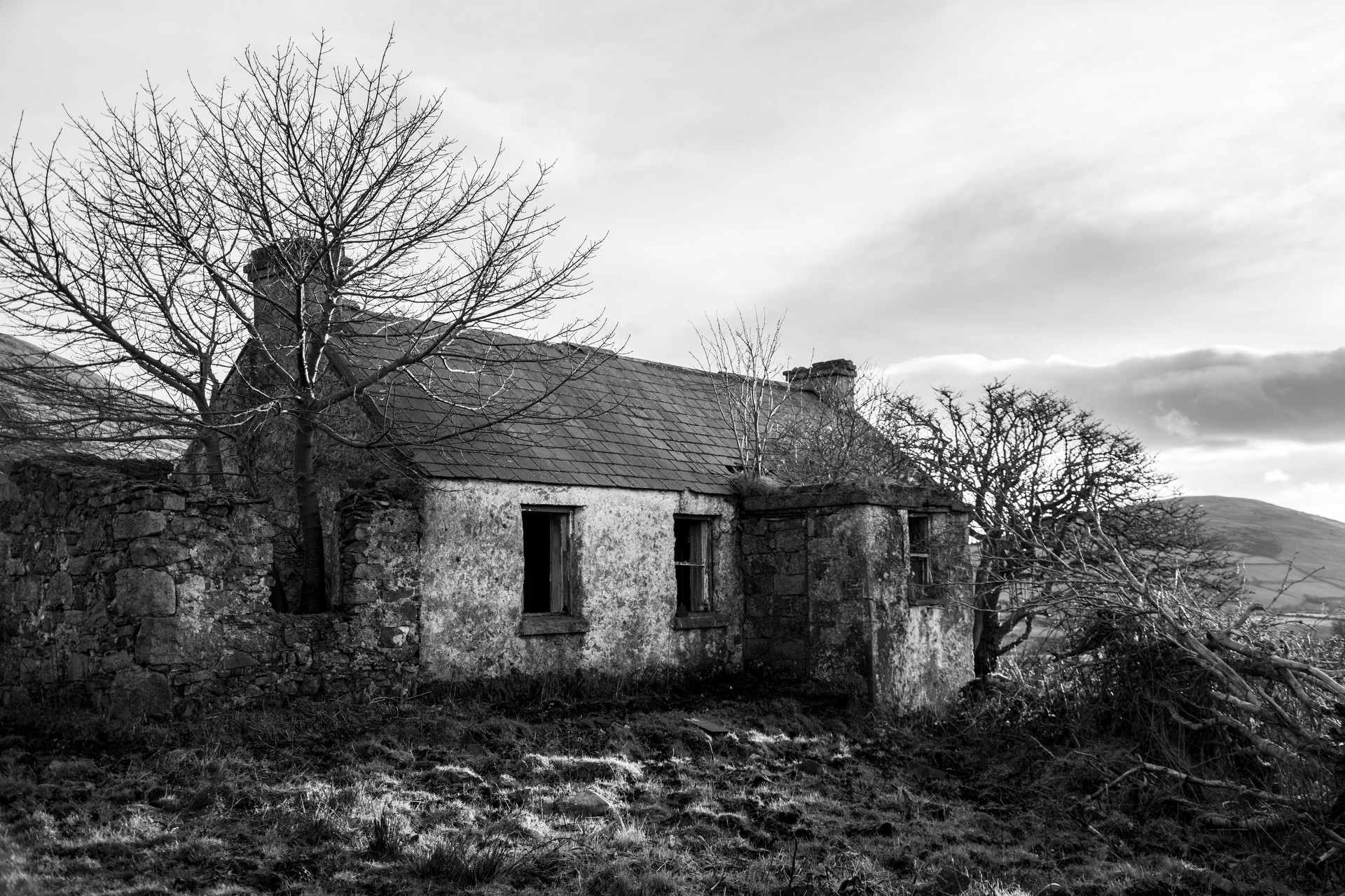 MONO - this old house by sean mcaliskey (0 marks)