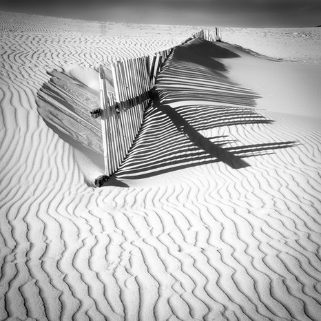 """Dune"" by Hugh Rooney"