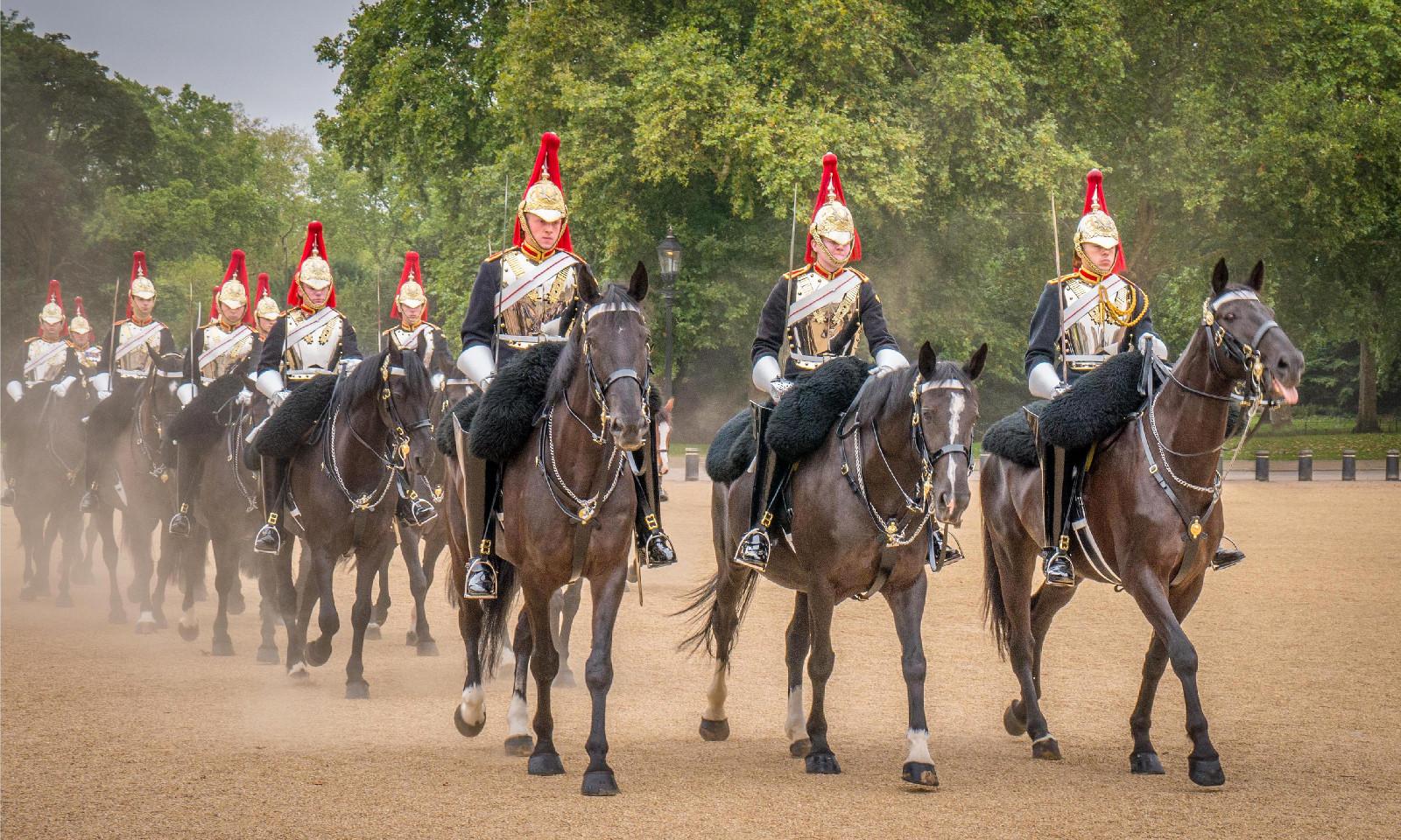 COLOUR - All the Kings Horses - Laura Stevenson by Frances Price (11 marks)