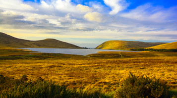COLOUR - the mournes by sean mcaliskey (8 marks)