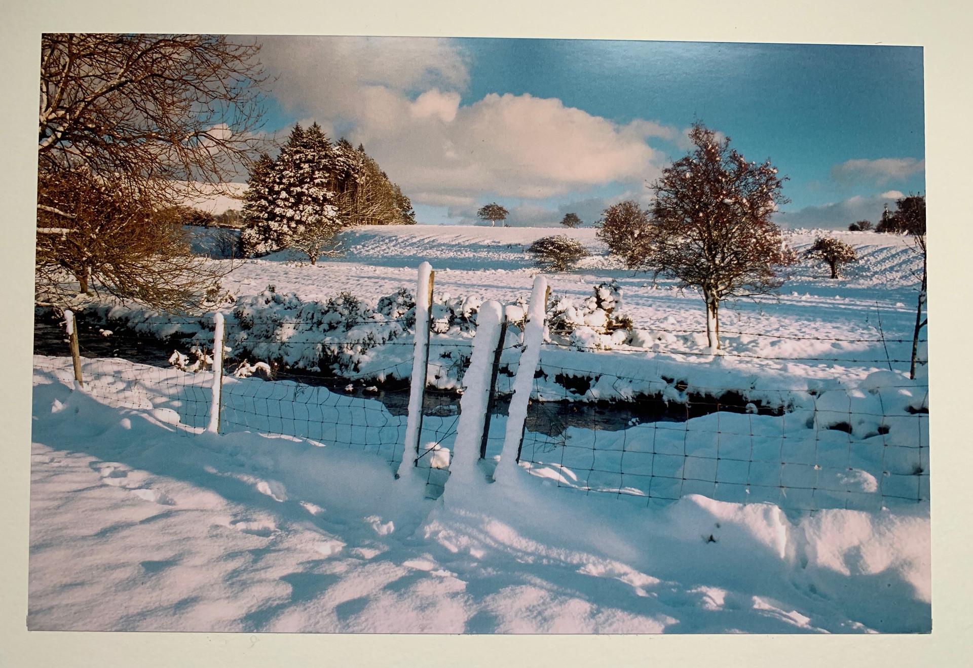 COLOUR - Winter Wonderland - Bing Crosby by Joe McKay (8 marks)