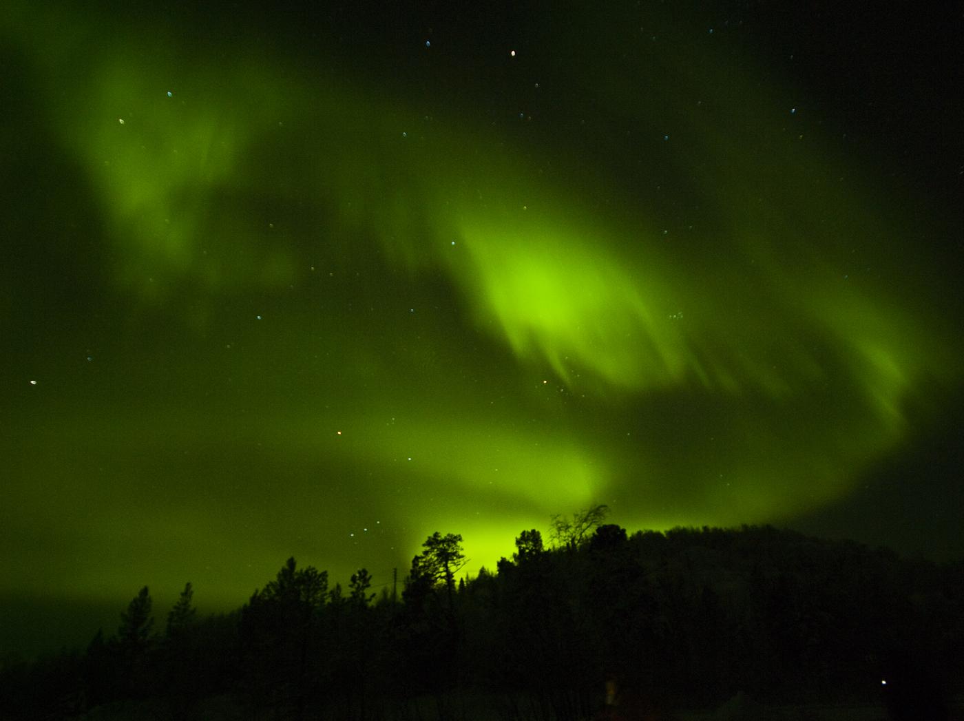 Aurora_Kirkenes 2012.jpg