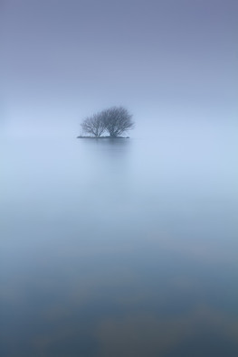 Silver-0-Atmosphere_Gregory McStraw_Banbridge Camera Club.jpg