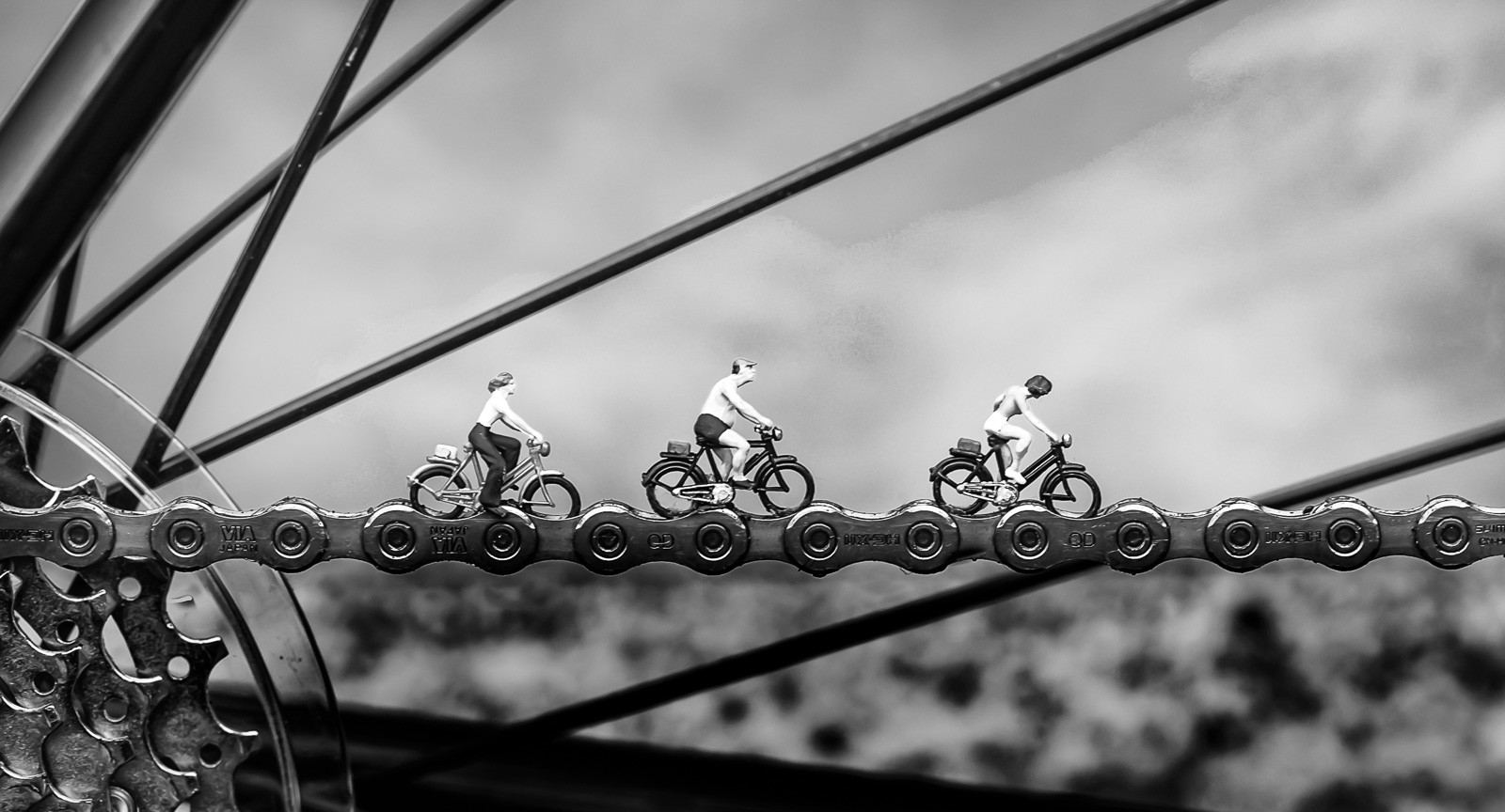 MONO - Bicycle Race - Queen by Pauline McAleese (12 marks)