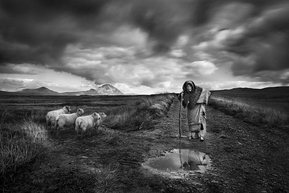MONO - Pilgrim by Dave Martin (18 marks)