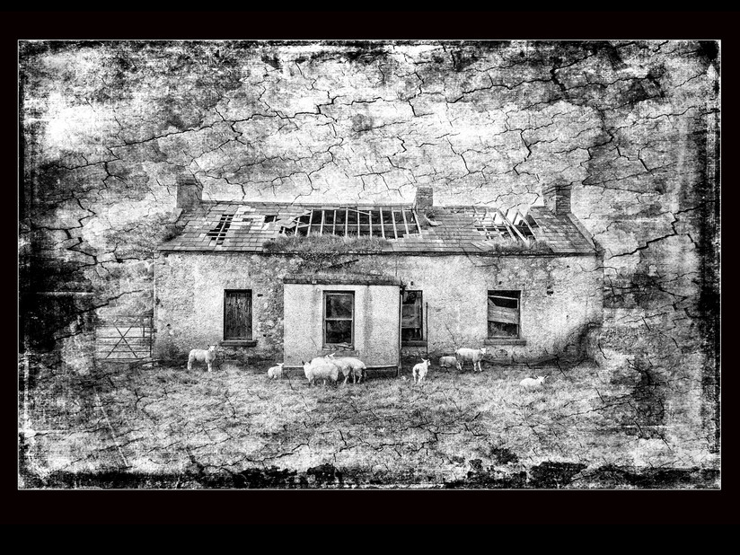 MONO - Cottage by Briah Hennessy (8 marks)