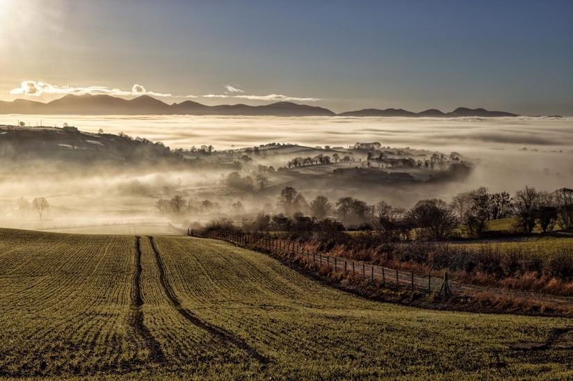 PDI - Into the Mist by Gary Cowan (11 marks)