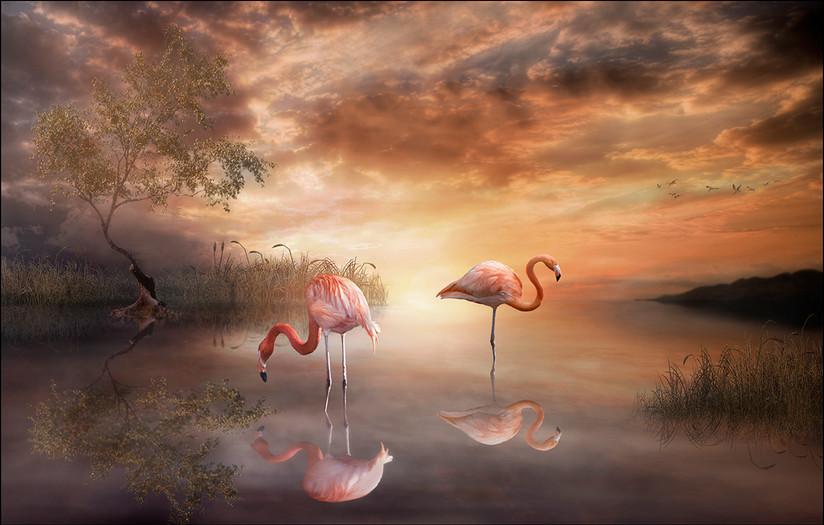 PDI - Flamingo Paradise by Jayne Libby (17 marks)