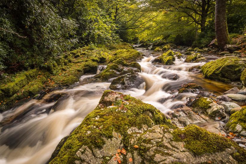 PDI - Down at the River by Wayne Hazlett (9 marks)