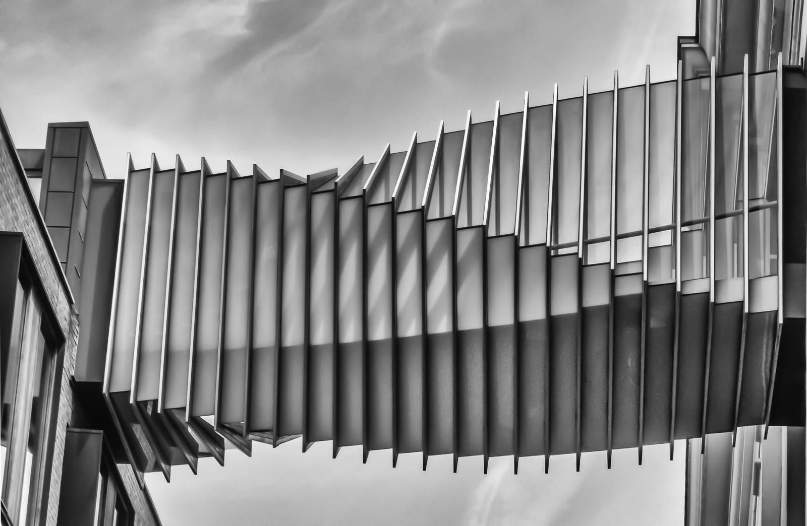 MONO - Twisted Walkway by Pauline McAleese (9 marks)