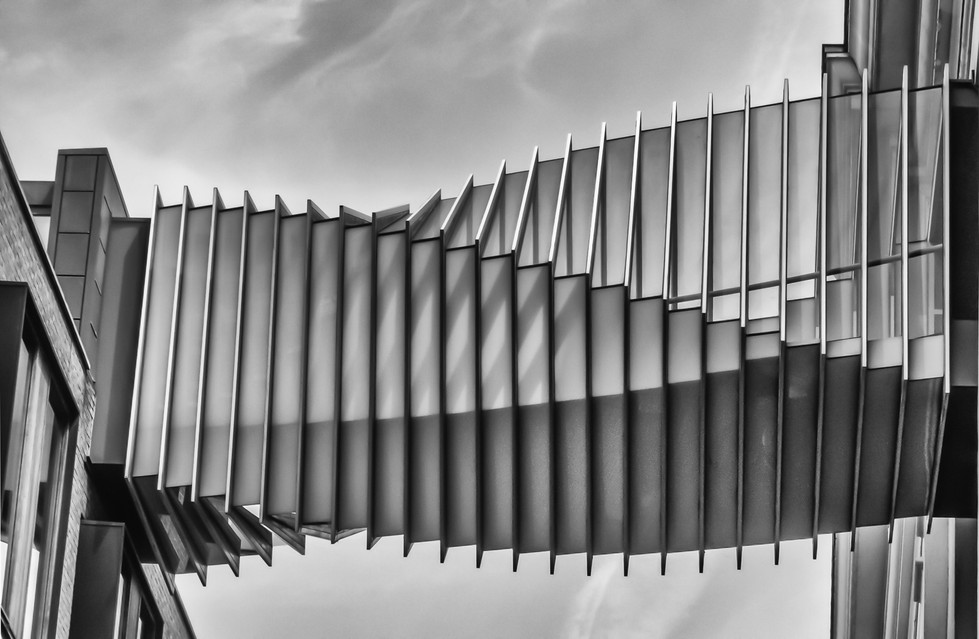 MONO - Twisted Walkway by Pauline McAleese (9 marks)