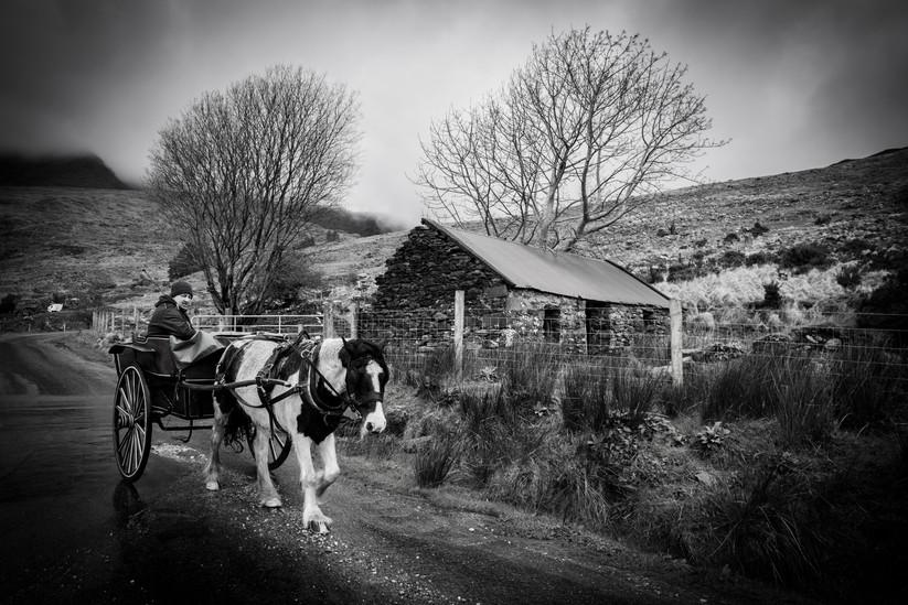 MONO - horse ride by sean mcaliskey (7 marks)