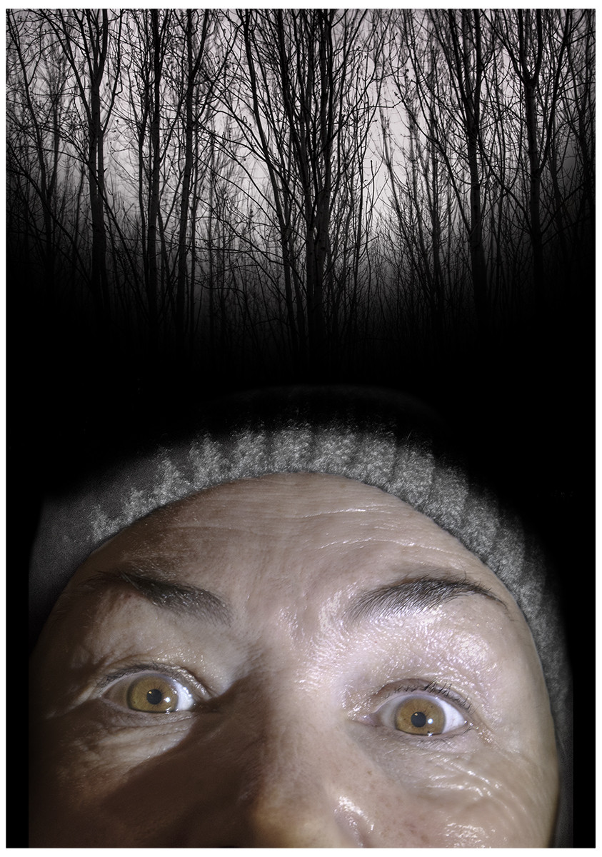 COLOUR - The Blair Witch Project - David Stern by Alan Field (7.5 marks)