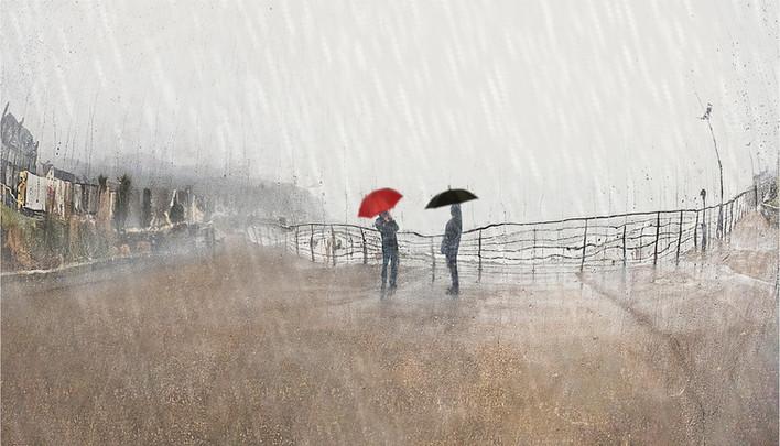 Bronze-2-Wet Reflection_Malachy Connolly_CB Camera club.jpg
