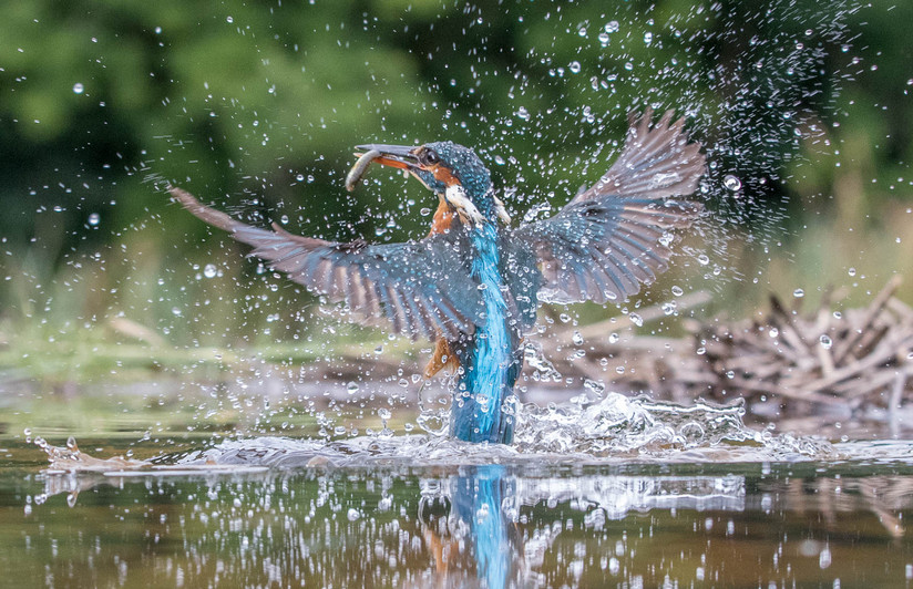 PDI - Splash by Terry Hanna (14 marks)