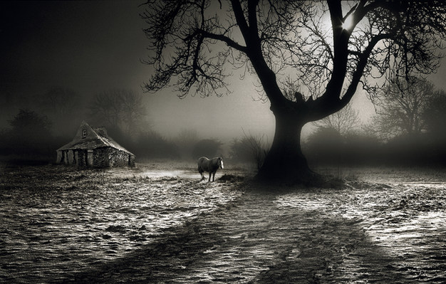 """""""Winters Grip"""" by Michael Maguire"""