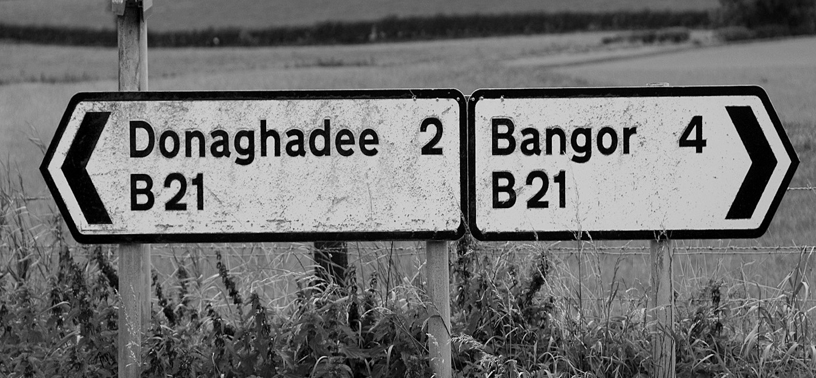 MONO - Six Miles From Bangor To Donaghadee - Richard Hayward by Paul Miller (9 marks)