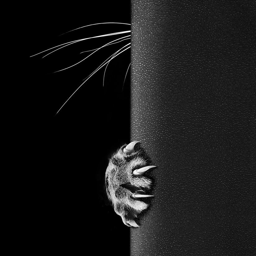 MONO - Peek a Boo by Sharon Gilroy (13 marks)