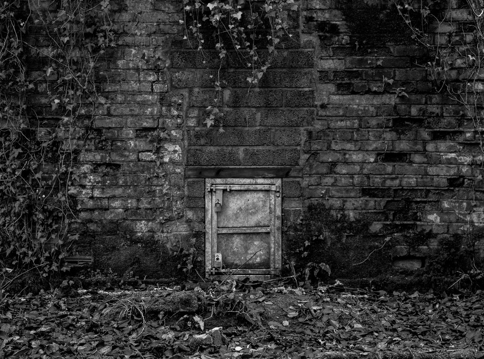 MONO - Door to the Unknown by Thomas Crudden (6 marks)