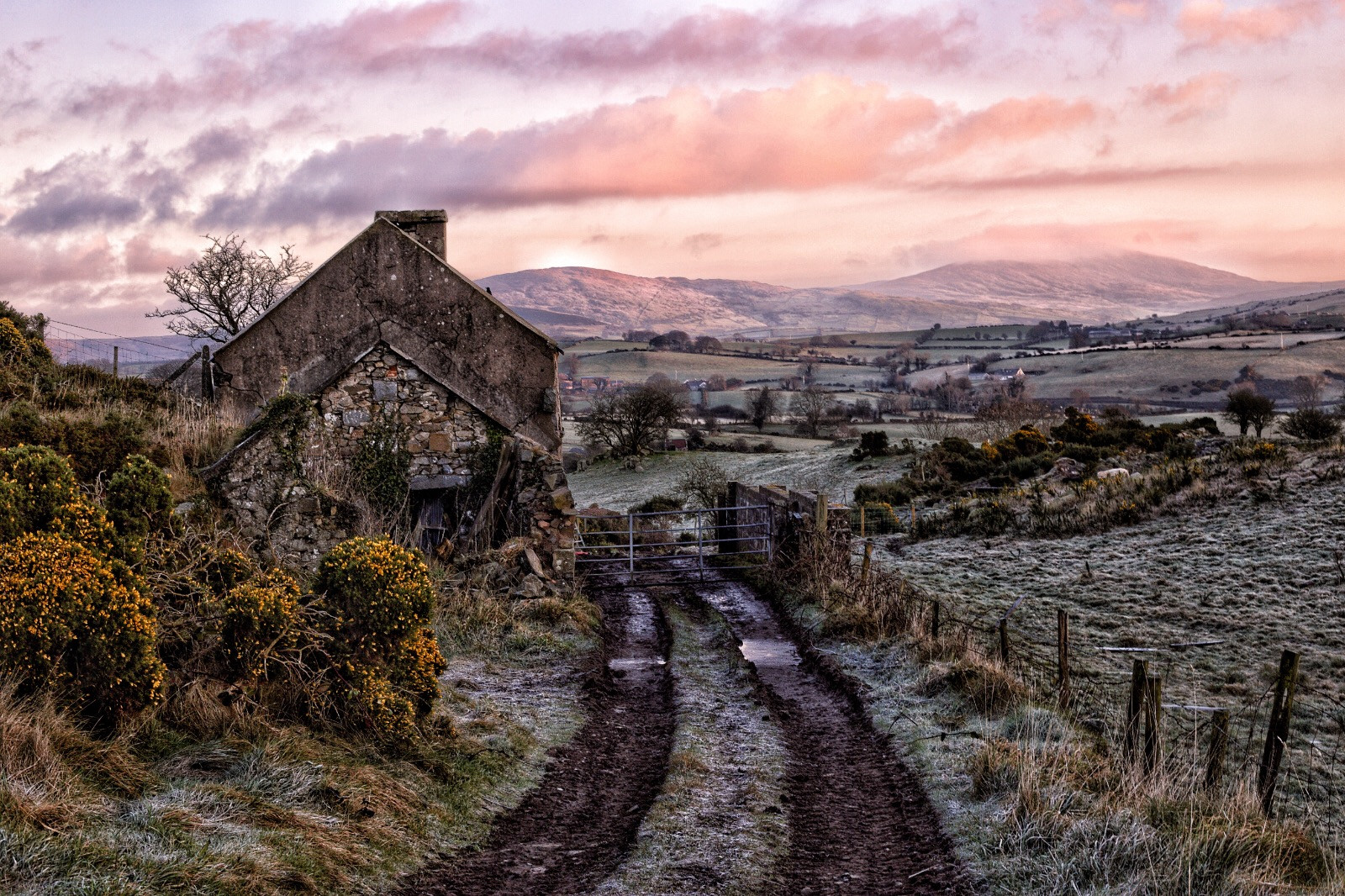 COLOUR - Frosty Morning Countryside by Gary Cowan (9 marks)