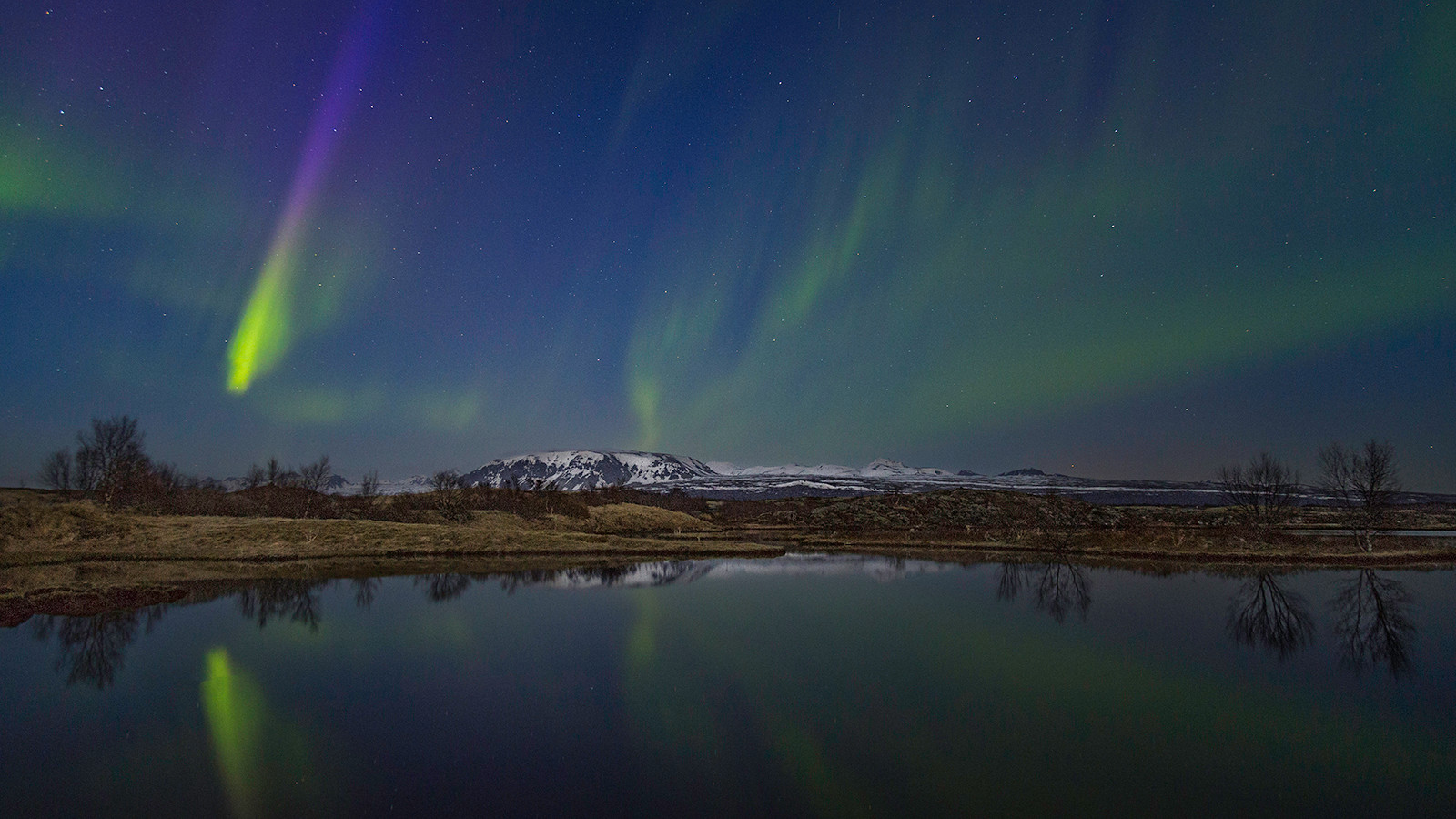 COLOUR - Northern Lights - Philip Pullman by Siobhan Kirk (11 marks)