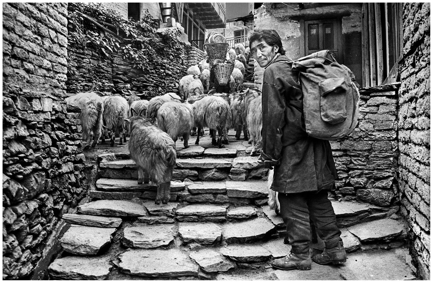 MONO - Nepali shepherd by Tom Dodd (14 marks)