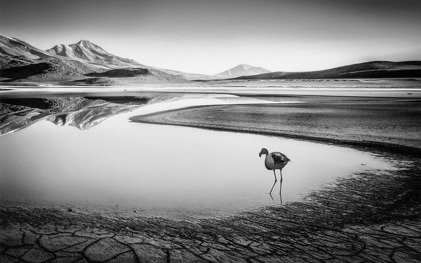 MONO - Laguna Chiarkota by Ken Lindsay (16 marks)