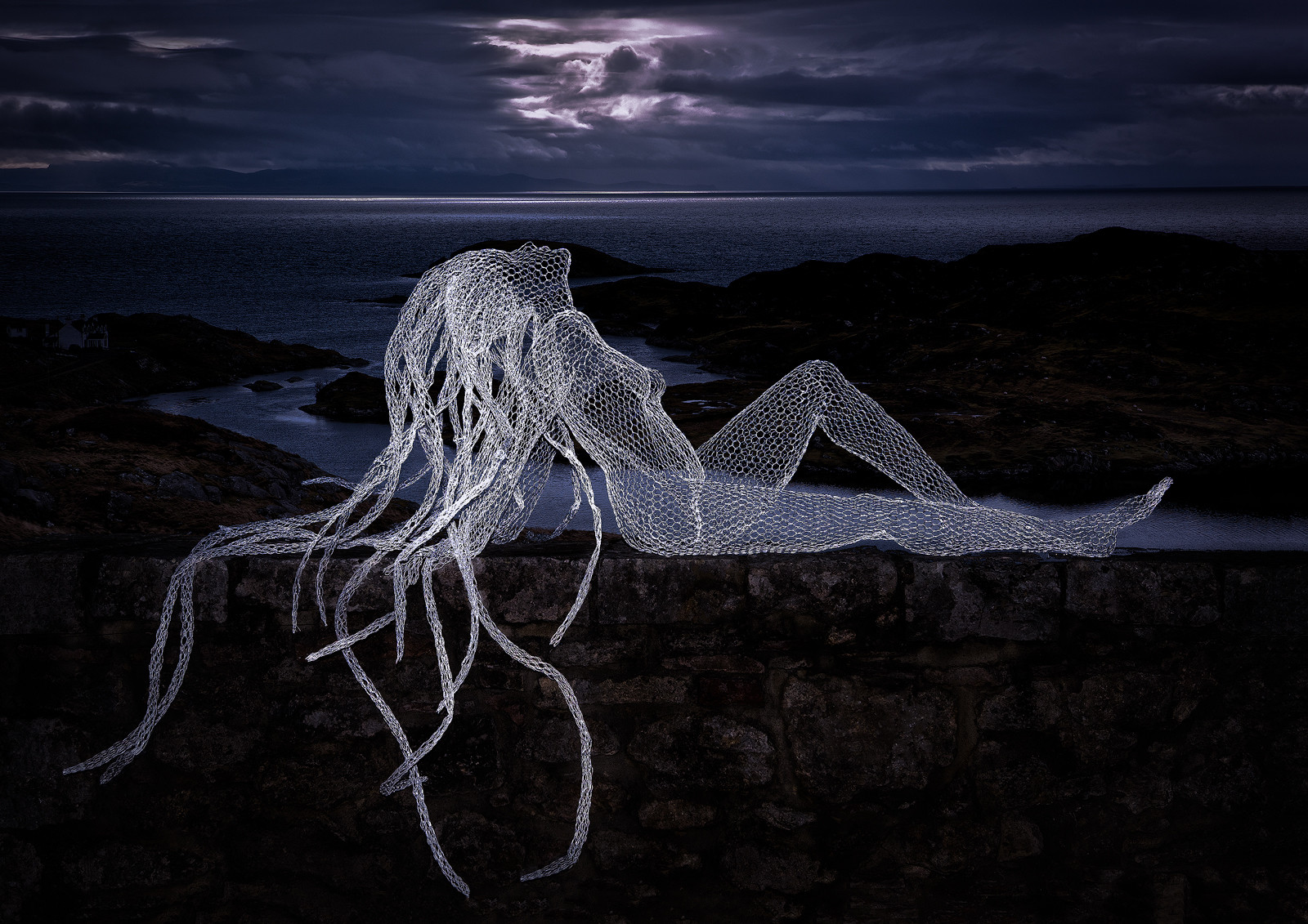 PDI - The Sea Nymph  - Ruth Langan by Pauline O'Flaherty (12 marks)