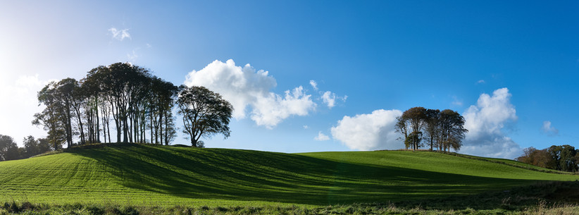 PDI - Sunshine & Shadow by Damian McDonald (10 marks)