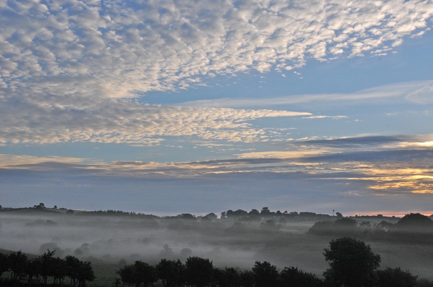 145 Dopk_Morning Mist2.jpg