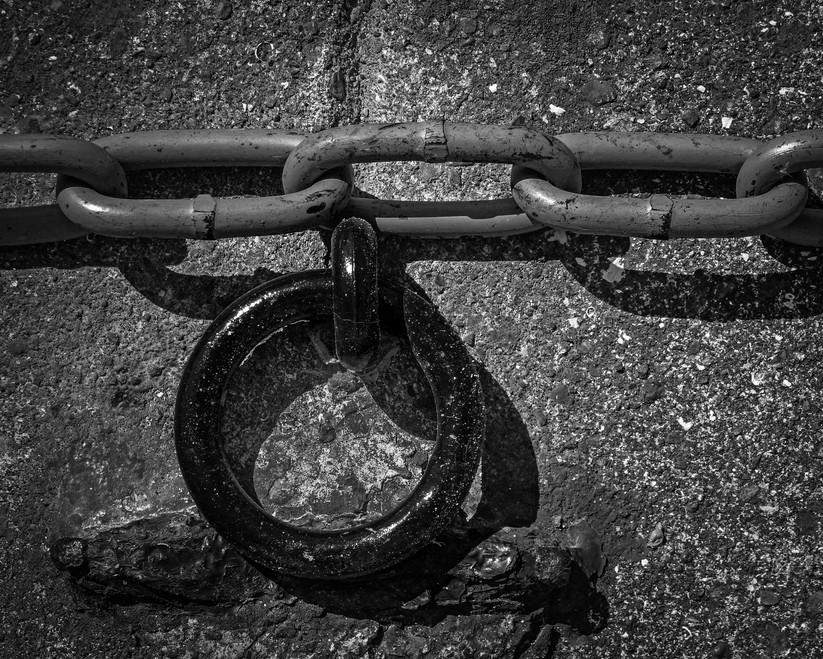 MONO - The Chain of Curiosity - Sandi Toksvig by John Belshaw (9 marks)