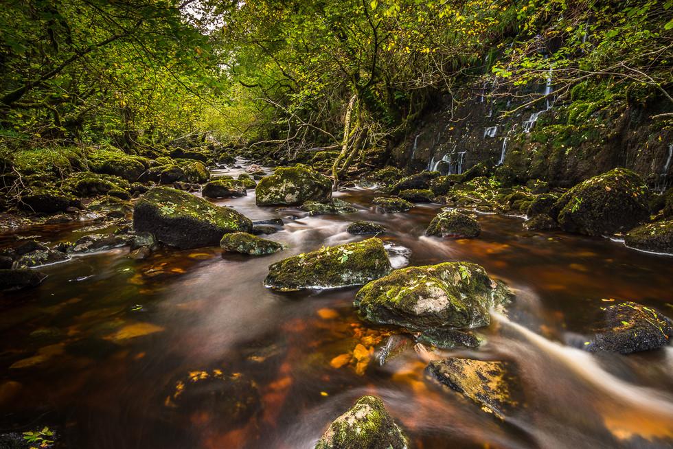 COLOUR - The Glen by Wayne Hazlett (9 marks)