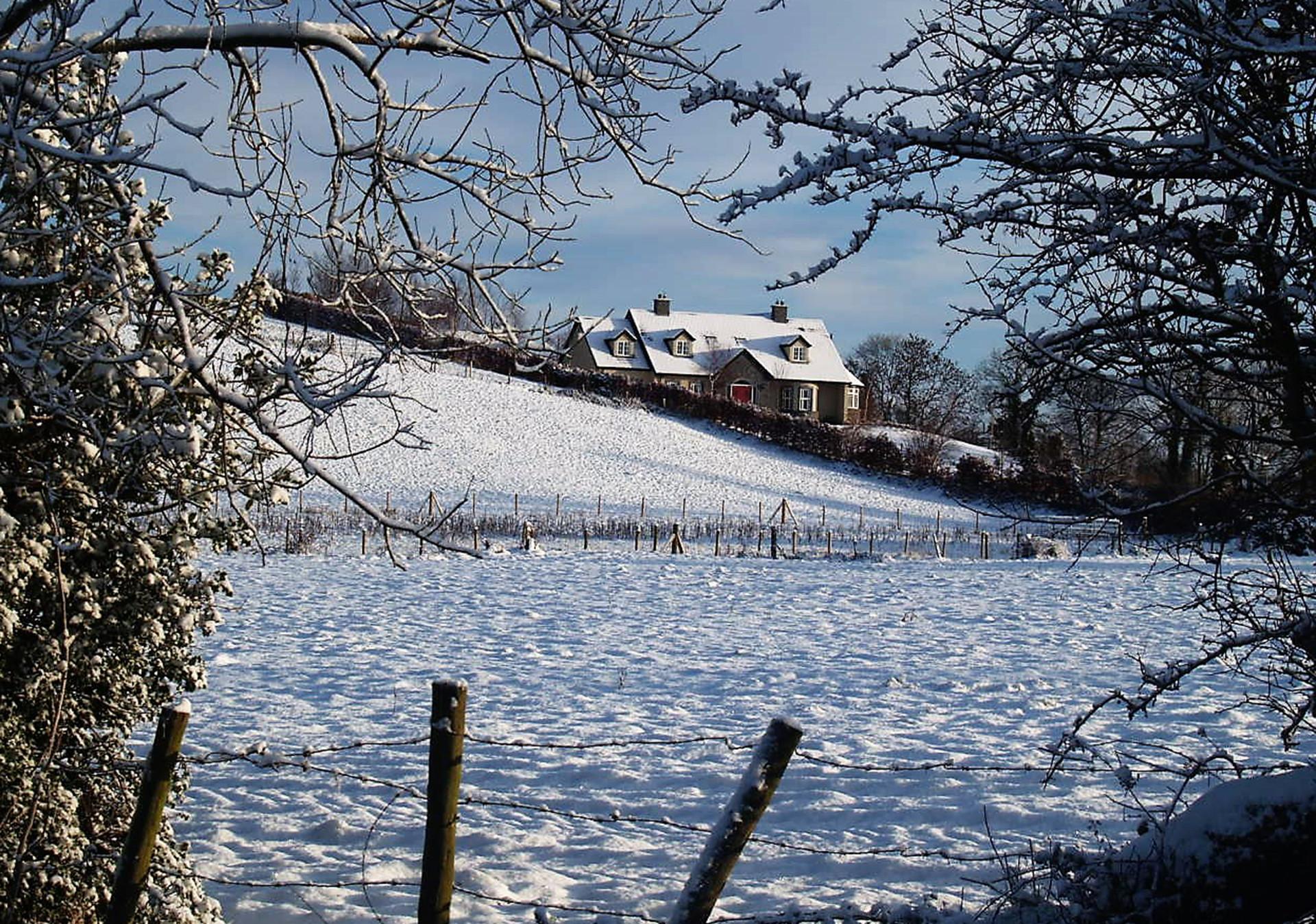 PDI - Winter Scene by John Gervin (8 marks)