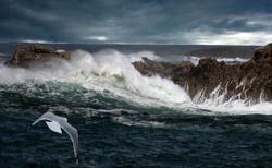 Ribbon_Donegal coast   Kieran Close   C P A    Belfast.jpg