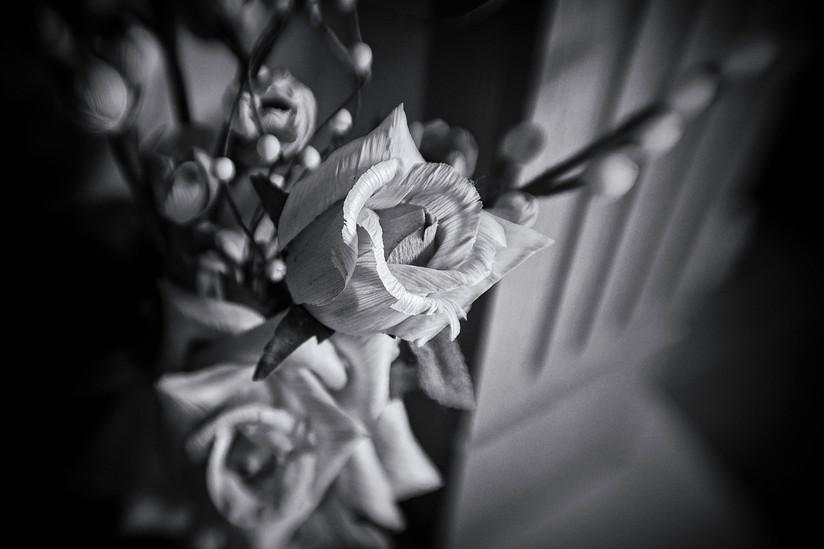 MONO - Flower by Tom Dalzell (10 marks)