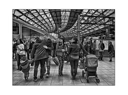 M31_R5_Tom_Dalzell_Rd_5_Station_Greet_fs.jpg