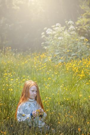 P-NIPA-EX17-PDI-102-buttercup meadow-Rosemary Hughes-DUCK.jpg