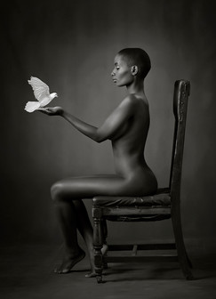 """""""Ebony Dove"""" by Ross McKelvey (20 marks)"""