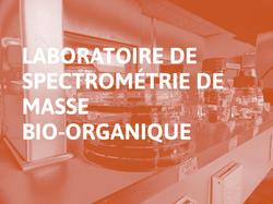 Laboratoire_de_Spectrométrie_de_Masse_Bio-Organique