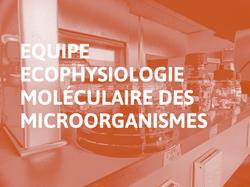 Equipe_Ecophysiologie_moléculaire_des_microorganismes