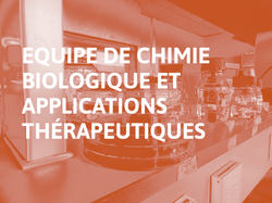 Equipe_de_Chimie_Biologique_et_Applications_Thérapeutiques