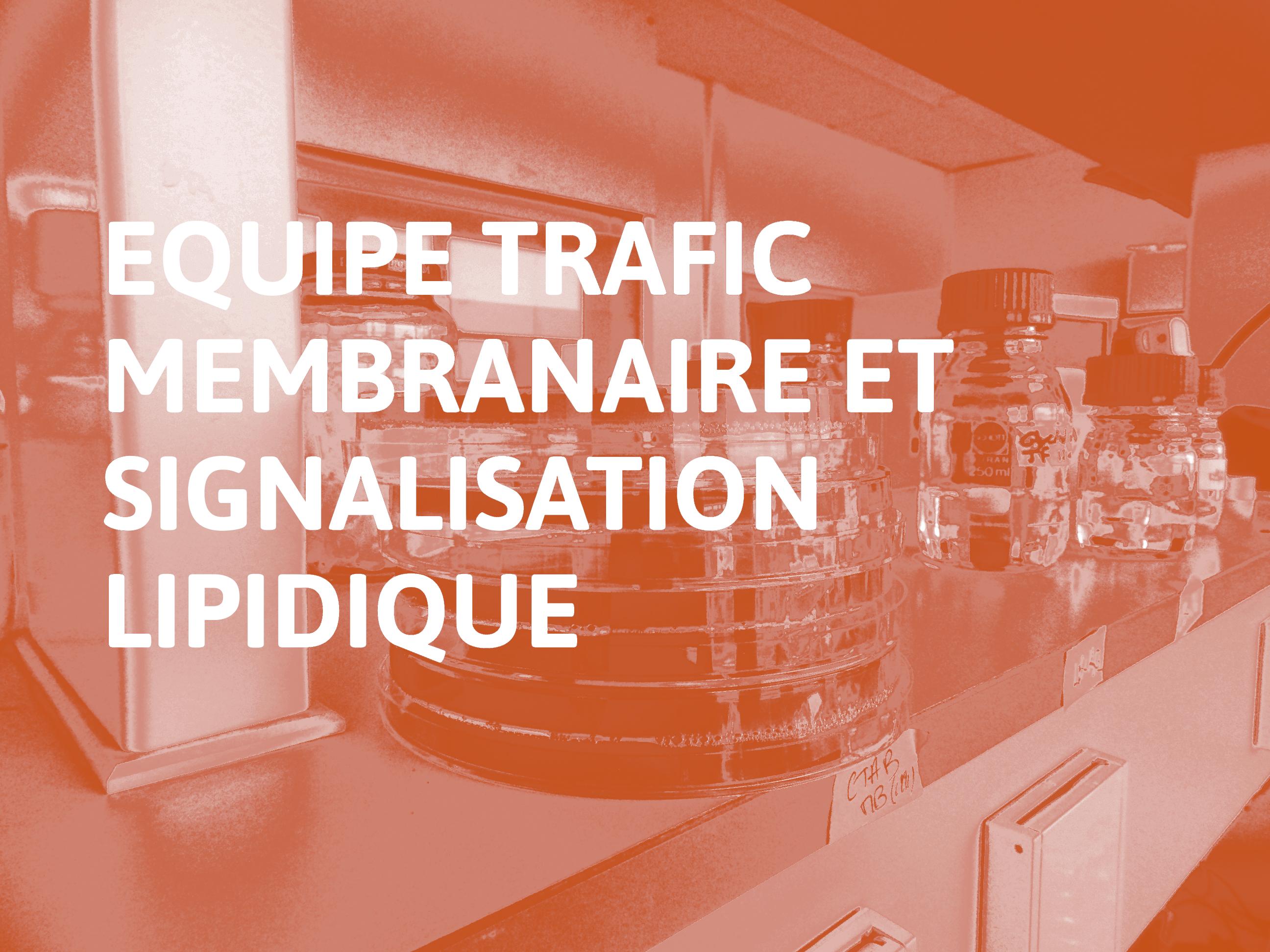 Equipe Trafic membranaire et signalisation lipidique