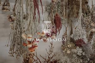 Mama Bloom Header Image.png