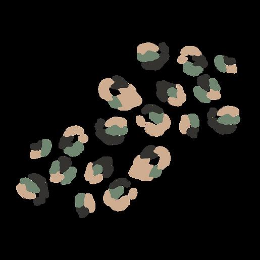Leopard Variation 1.png