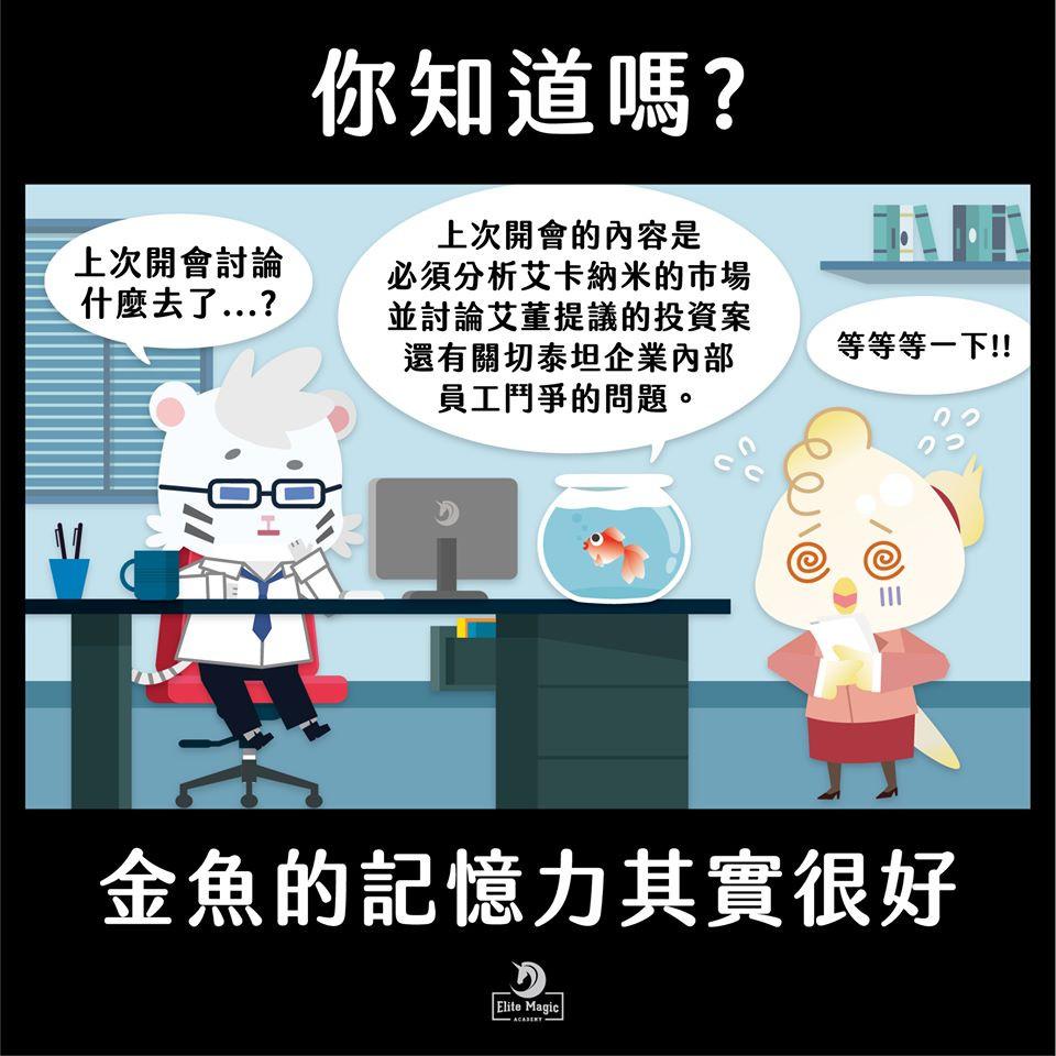 加點魔法magic+ 台灣魔術教學第一品牌,專營幼兒園、小學、營隊魔術科學教育系統,STEAM教育增強邏輯思維與自信。